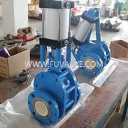 ceramic lined double disc gate valve