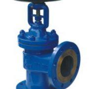 Angle type bellow sealed globe valve