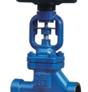 Forged bellow sealed Globe valve