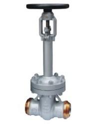 ANSI Cast bellow sealed gate valve