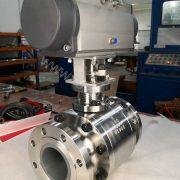 Ceramic ball valve for fly ash application