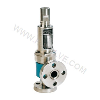 Closed Spring Loaded Low Lift Type Safety Valve (2)