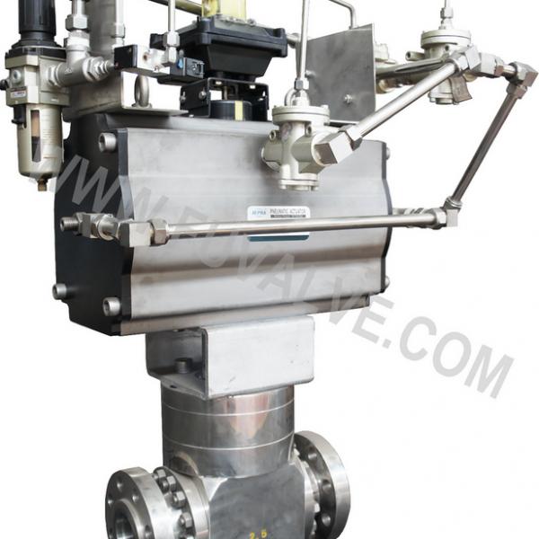 PDS ball valve