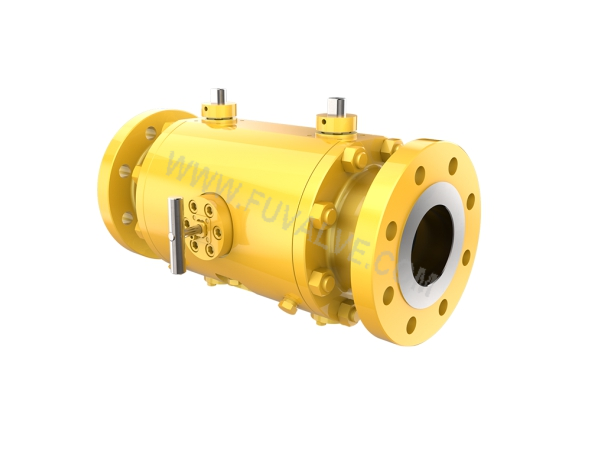 Special double ball valve (2)_1