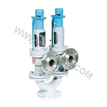 Twin spring type safety valve (2)