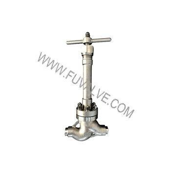 cryogenic globe valve (1)