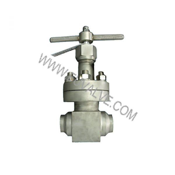 cryogenic globe valve (2)
