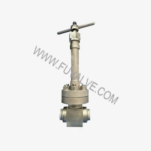 cryogenic globe valve (3)